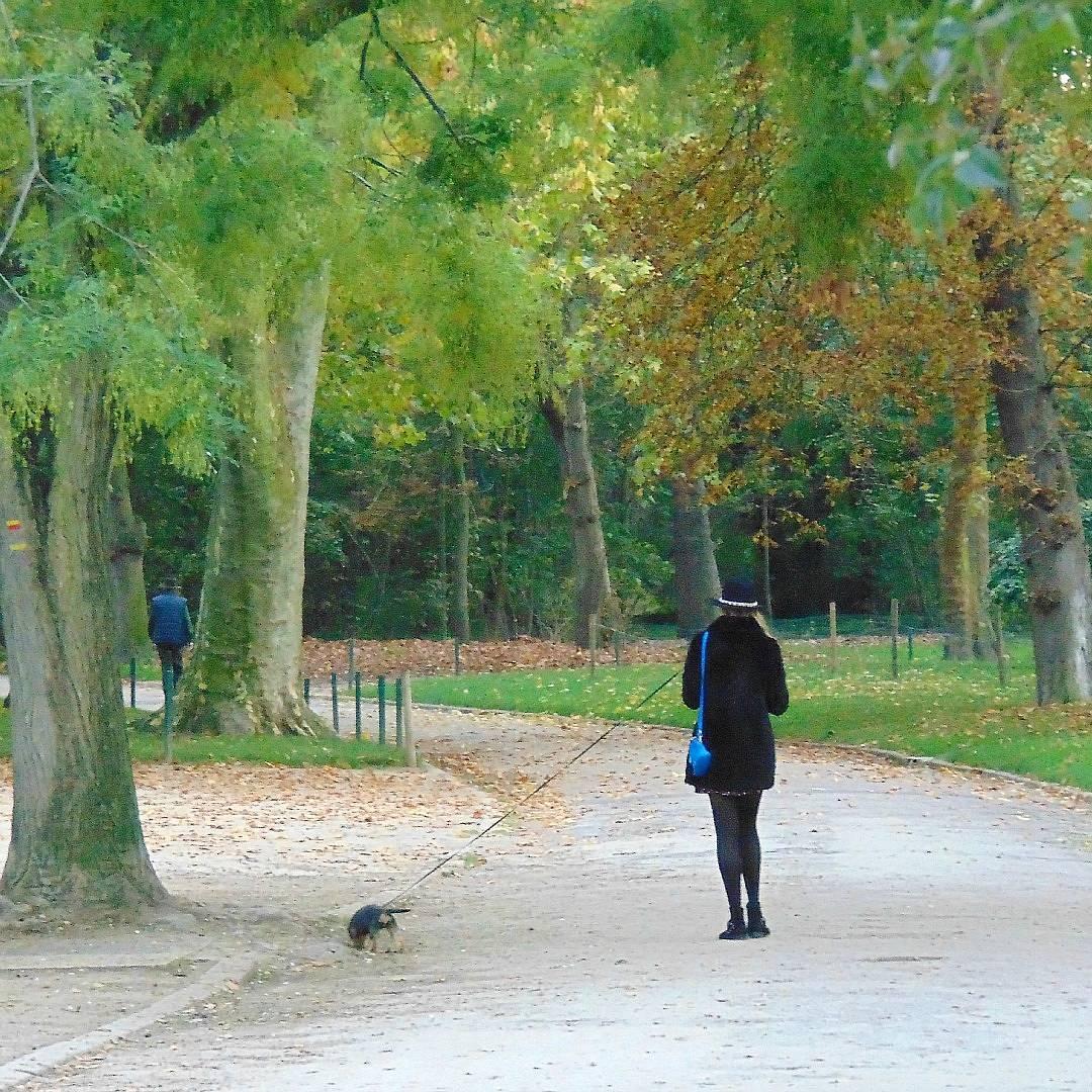Lasek Buloński, czyli gdzie można odpocząć w Paryżu.