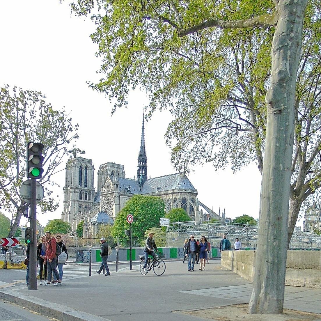 Romantyczny spacer wokół paryskiej Katedry Notre-Dame