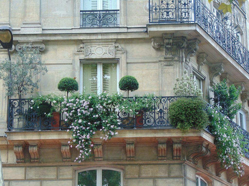 baron Haussman budynki w Paryzu