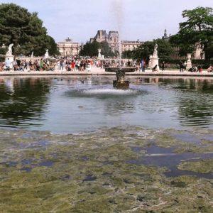 Ogrody Tuileries.