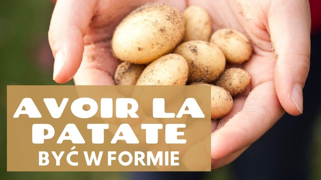 Nauka francuskiego. AVOIR LA PATATE ZIEMNIAK