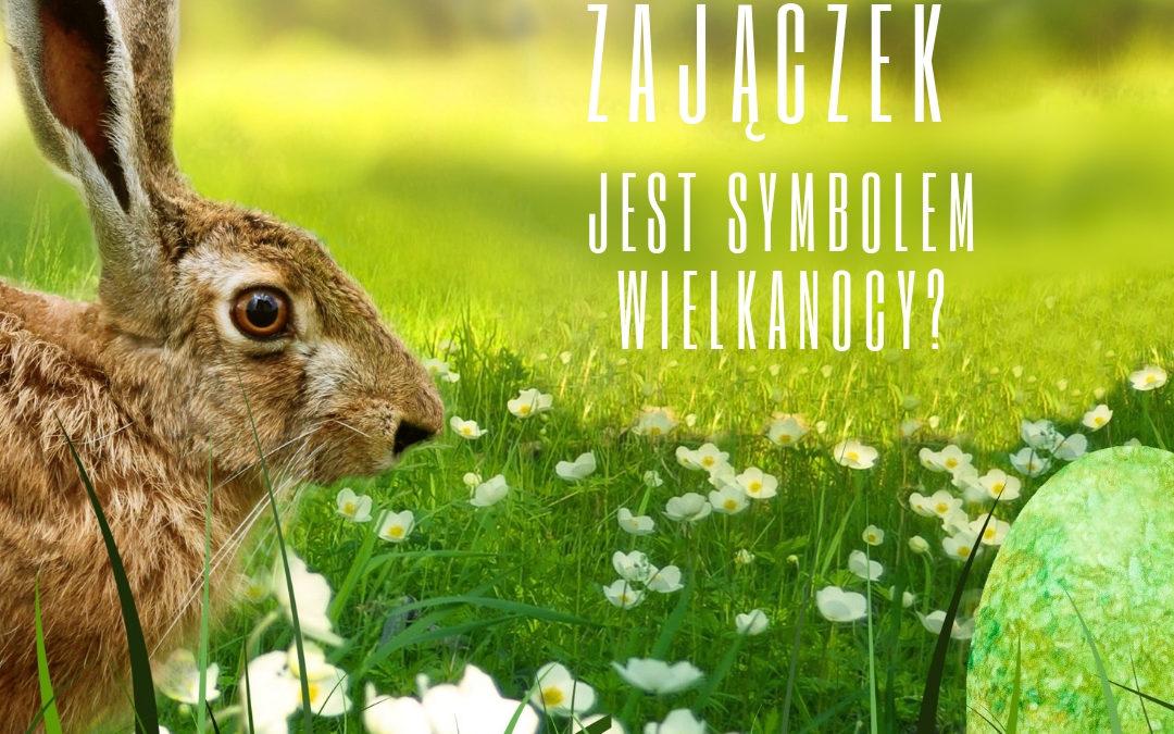 Wielkanoc we Francji: Dlaczego zajączek jest symbolem Wielkanocy?